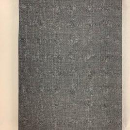 Reisebuch von Thierry